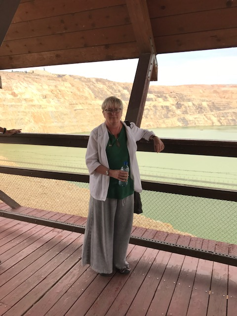 The author standing in the viewing stand at The Berkeley Pit.